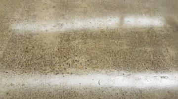 wellington polished concrete floor