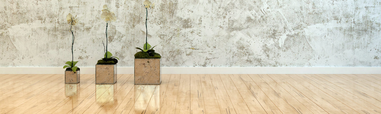 Lower hutt floor sanding